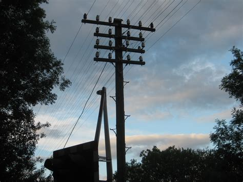 electric pole wires climbing instructor electrocuted after scaling utility