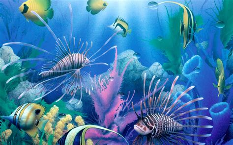 3d wallpaper water fish fish 3d beautiful wallpaper in hd 1220 hd wallpapers