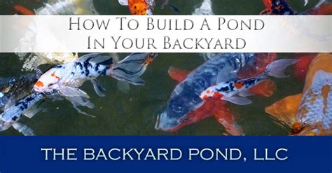 how to make a pond in your backyard how to make a pond in your backyard 20 innovative diy pond