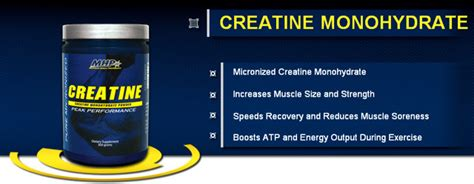 creatine 5 day loading phase micronized creatine mhp on sale muscleintensity