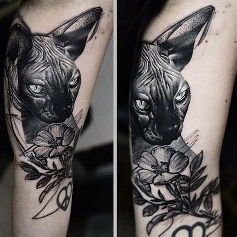 sphynx tattoo 1000 ideas about sphynx cat on tattoos