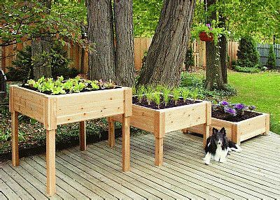 Elevated Container Garden Planters by Square Wooden Planter Box 24 3 4 Quot Planter 3624