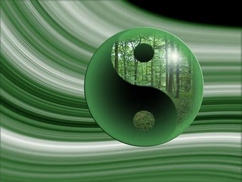 yin yang photo by poetstorm photobucket