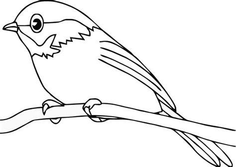 catatanku anak desa gambar mewarnai burung hantu
