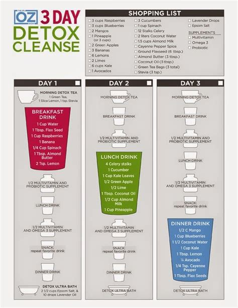 Two Day Juice Cleanse Detox by 25 Best Ideas About 2 Day Cleanse On 2 Day