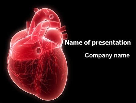 Model Of Heart Powerpoint Template Backgrounds 07662 Cardiovascular Powerpoint Template Free
