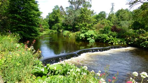 River Garden by Mount Usher Gardens I See You See