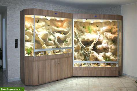 terrariumterrarien der luxusklasse  jeder groesse und