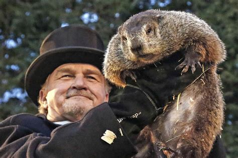 groundhog day will come groundhog day spotlights america s favorite weather animal