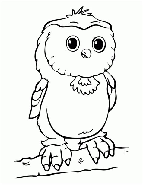 baby owl on branch coloring page h m coloring pages