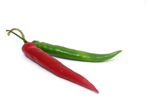 chili peppers best chili chile jalapeno pepper roasters for sale 719