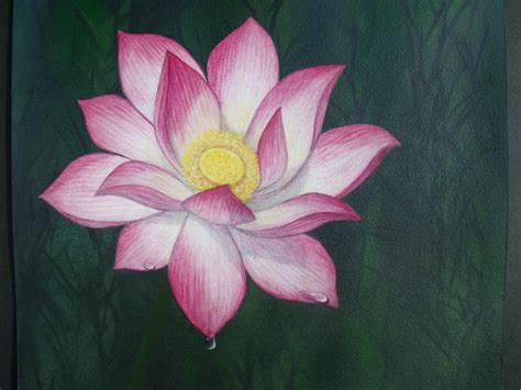 acrylic painting lotus flower 301 moved permanently