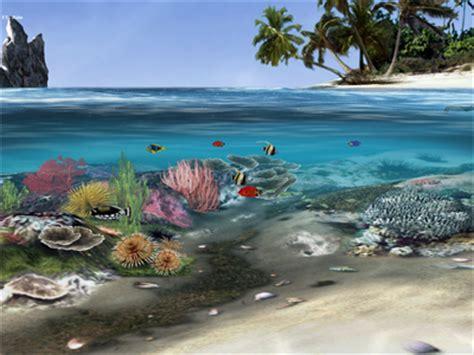 ecran de veille aquarium anime gratuit gratuits propos 233 s par nos experts
