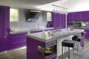 Purple Kitchen Cabinets Purple Kitchen Ideas Designed In Feminine Style Mykitcheninterior
