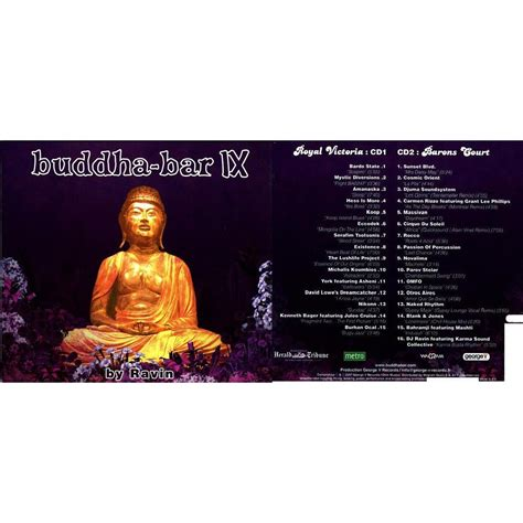 top bar music top buddha bar songs 28 images buddha bar ix by dj ravin on itunes buddha bar