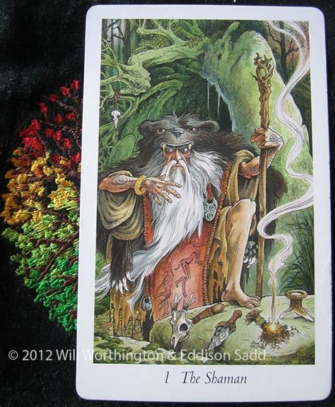 libro wild magic the wildwood hump day kind of magic priestess tarot