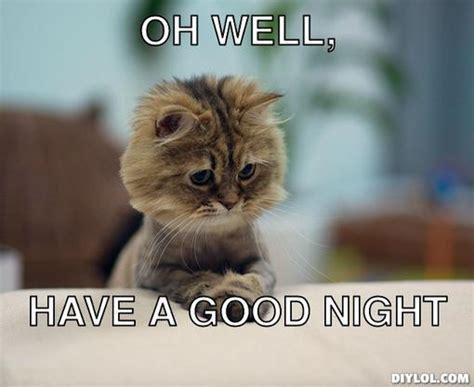 Have A Good Night Meme - good night grumpy cat www pixshark com images