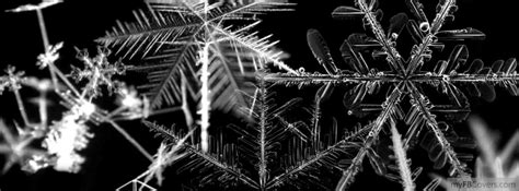 black and white cover black and white snowflakes covers myfbcovers