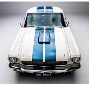 GT 350 Mustang For Hire Sydney Weddings Formals And