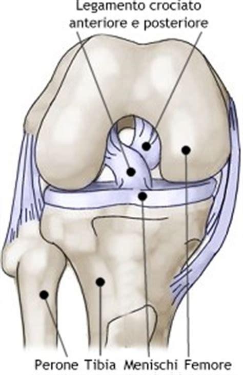 mal di ginocchio interno ginocchio traumi lesioni ginocchio rottura menisco