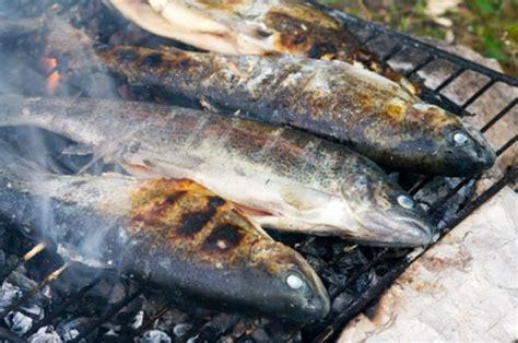 Lachs Auf Dem Grill Rezept 5111 by Wie Fisch Grillen Sollte