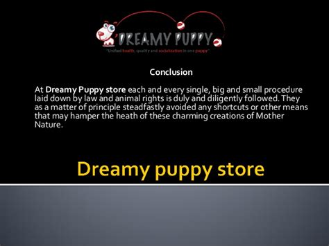 dreamy puppies dreamy puppies chantilly and fredericksburg that you simply can t res