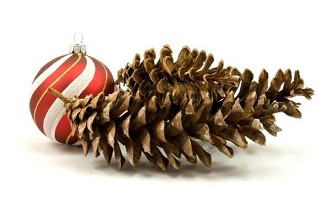 christmas pine cones wallpaper 39143