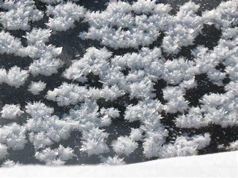 fiori di ghiaccio distesa di fiori di ghiaccio mar glaciale artico