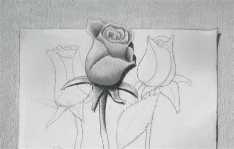 dibujar flores faciles paso paso inittowinitorg image gallery lapiz dibujo flor rosa