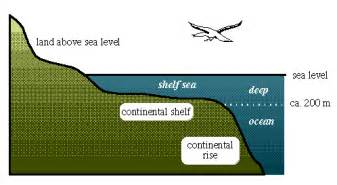 oceanography101 continental rise