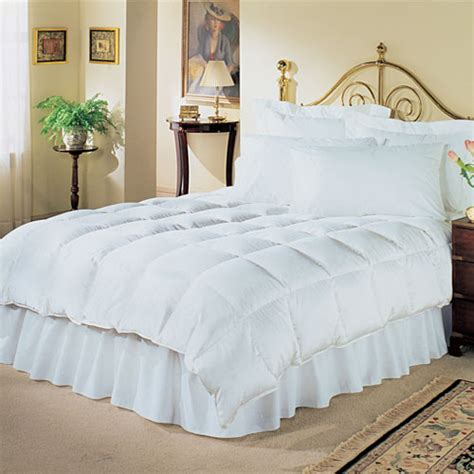 down comforter price phoenix down quintessence comforter twin 68x92 white duck