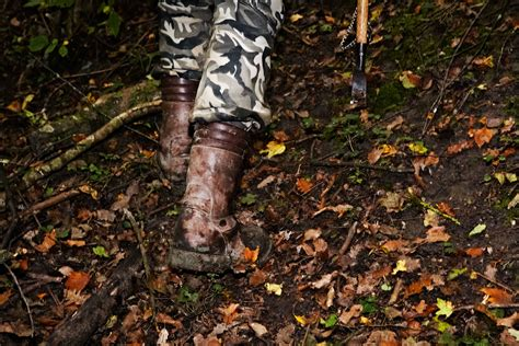 how to your to hunt truffles the map with italy s best truffle eater