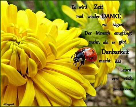 Blumen Pflanzen 3070 by Es Ist Mehr Als Nur Ein Wort Korbach Myheimat De