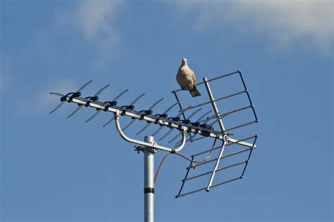 choose  tv antenna techhive