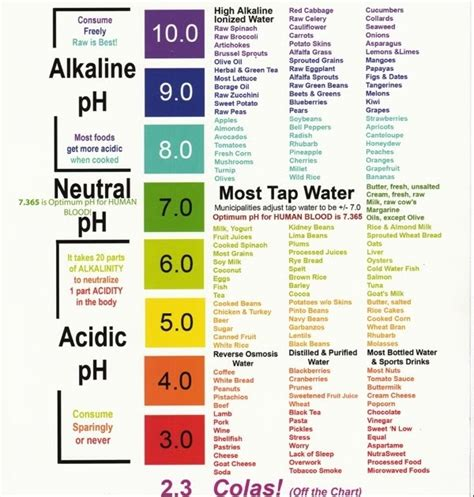 Alkaline Detox To Cleanse Cells by Alkaline Water Is The Secret To Optimal Health And