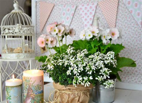sfondi desktop fiori di primavera fiori di primavera immagini