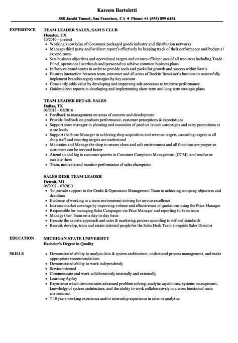 seo specialist resume seo team leader delhi india