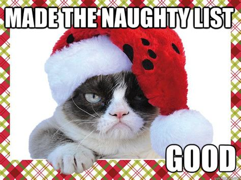Naughty Christmas Memes - a grumpy cat christmas introvert spring