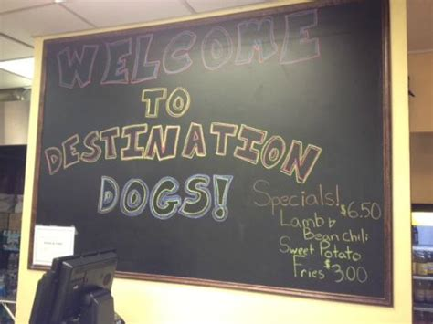 destination dogs destination dogs new brunswick restaurant avis num 233 ro de t 233 l 233 phone photos