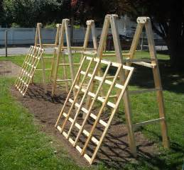 Easy Pea Trellis Tomato Ladders And Cucumber Trellises The Year Round Harvest