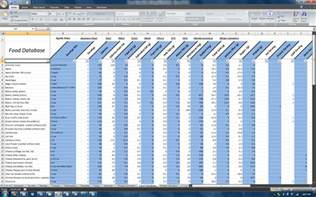nutrition spreadsheet template team beachbody nutrition and p90x spreadsheet makes