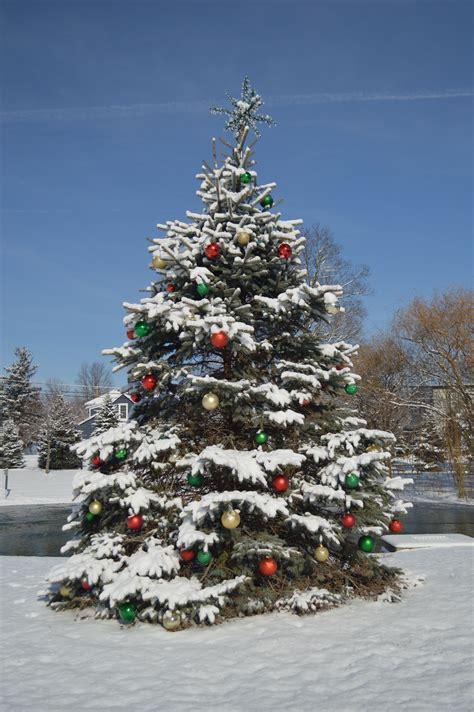 cadenas navideñas para facebook decoracion navidea arboles es la decoracin de los rboles