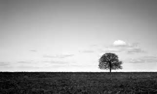 Landscape Black And White Isolation