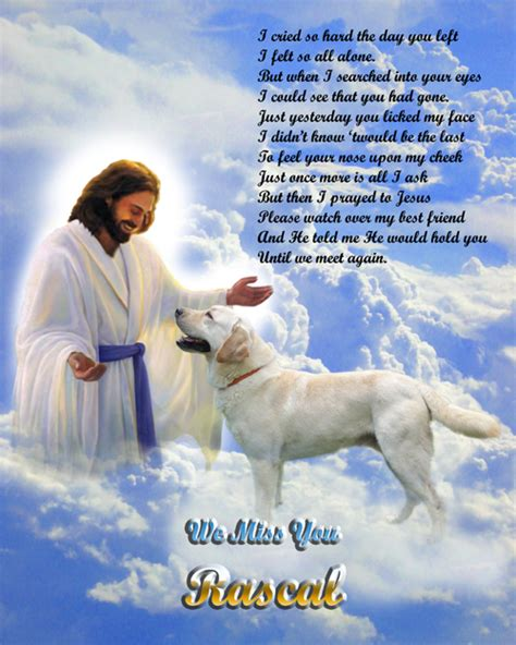 do dogs go to heaven do doggies go to heaven a new poem do dogs go to heaven