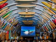 bird s surf shed surf clothing and wear san diego ca