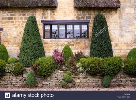Cottage Wall by Box Topiary Plants Outside A Cotswold Cottage Wall Broad