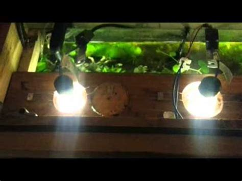 Lu Led Aquarium Diy 125 litre planted aquarium with gu10 led lights avi