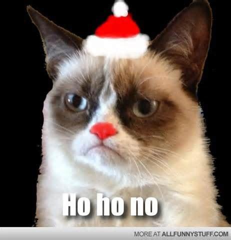 No Cat Meme - ho ho no cat meme cat planet cat planet