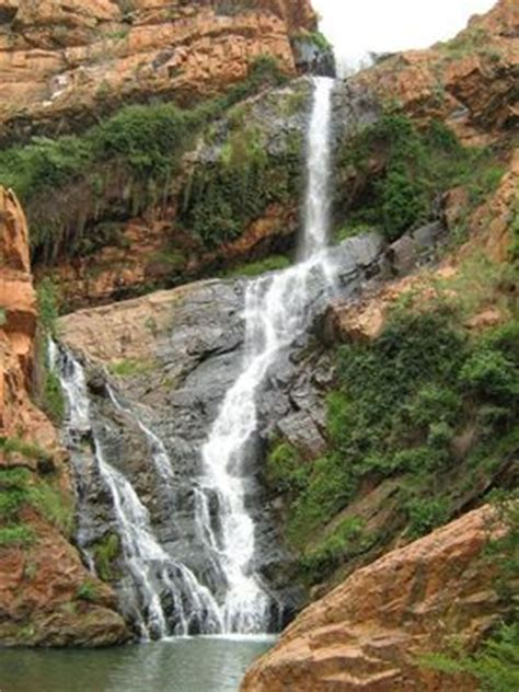 Walter Sisulu Botanical Gardens Prices Mini Hike At Walter Sisulu Botanical Gardens Joburg Connect Johannesburg Meetup