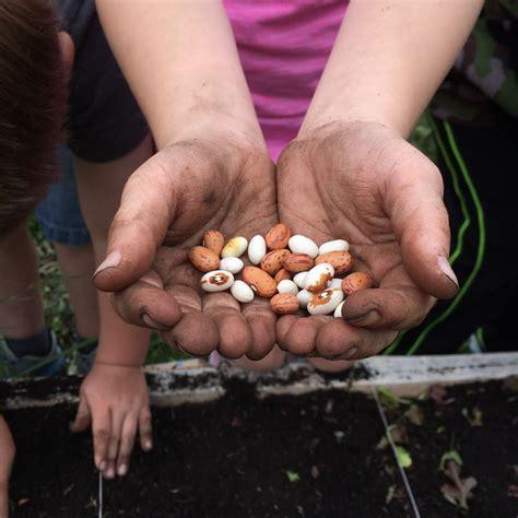 backyard growers backyard growers